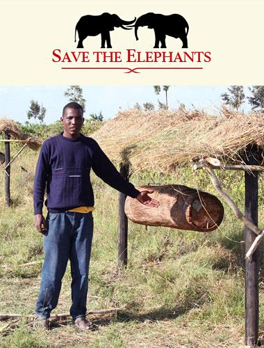 Les conflits Hommes-Eléphants